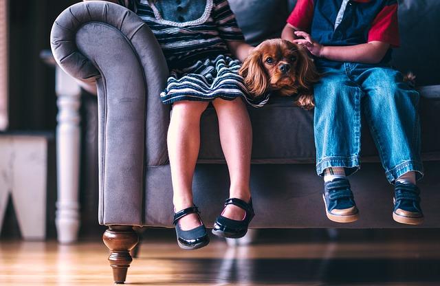 sedačka, dětské nohy, pes
